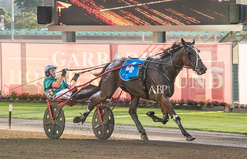 Elitloppet 2018: Runner-by-runner ysis - Harness Racing Victoria